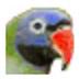 八哥五笔打字员 V2013.6 速成版