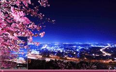 樱花配夜景xp主题