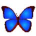 数码照片浏览器(bkViewer) V5.4 绿色版
