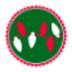 商祺網絡加速器 V24.1.4.3 綠色版