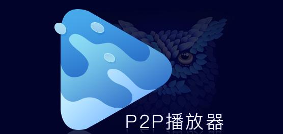 p2p播放器免费下载_p2p播放器大全