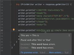 可在語法出錯時提出警告!Java開發工具IntelliJ IDEA喜提新插件