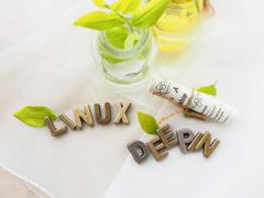 在Linux系统中查看和修改域名系统配置的方法