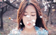 清新美女唯美写真Win7主题