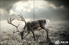 怎么使用PS把模糊的照片變得清晰?Photoshop模糊照片變清晰方法教程
