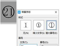 如何在wps文字中插入20以上的圆圈数字编号?