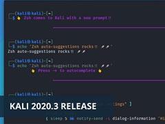 Kali新版正式發布:Kali Linux 2020.3