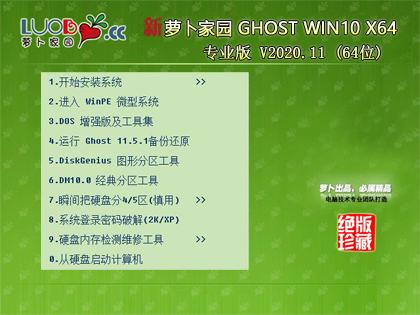 萝卜家园 WINDOWS10 64位专业版 V2020.11