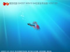 番茄花园 GHOST WIN10 64位安全专业版 V2021.01