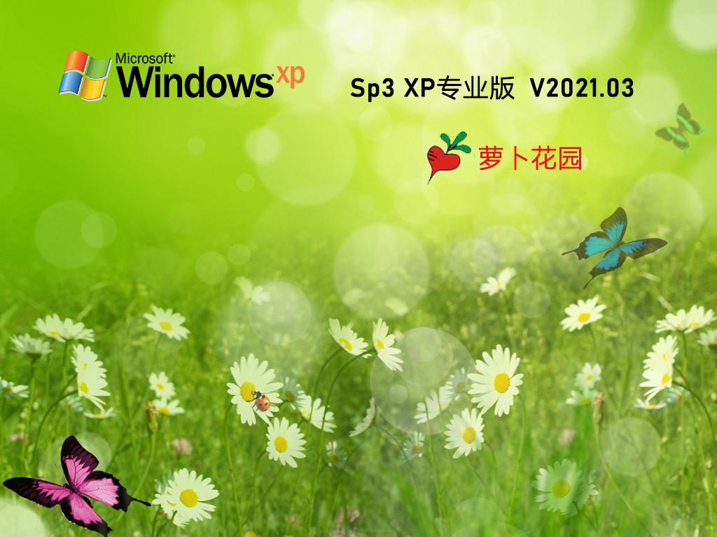 蘿卜家園GHOST XP SP3 經典專業版 V2021.03
