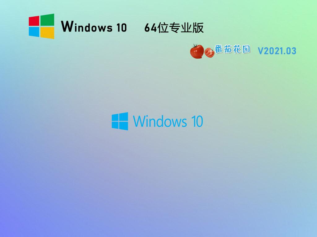 番茄花园Win10 20H2 64位专业版镜像 V2021.03