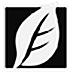 SkinFiner(磨皮美白工具) V4.1.1 绿色免费版