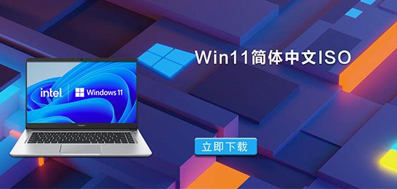 Win11简体中文ISO_Win11汉化ISO_Wi