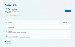 Win11更新失败:某些更新文件没有正确签名错误代码0x800b0109怎么办?