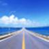 道路测设大师 V10.2 最新版