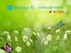 新萝卜家园Win10 20H2 64位游戏专用版 V2020.03
