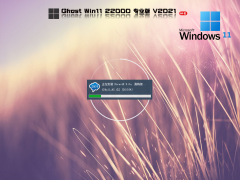 微软Windows 11 Insider Preview 22000.184 V2021.09